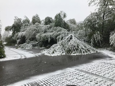 Winterfeeling im April